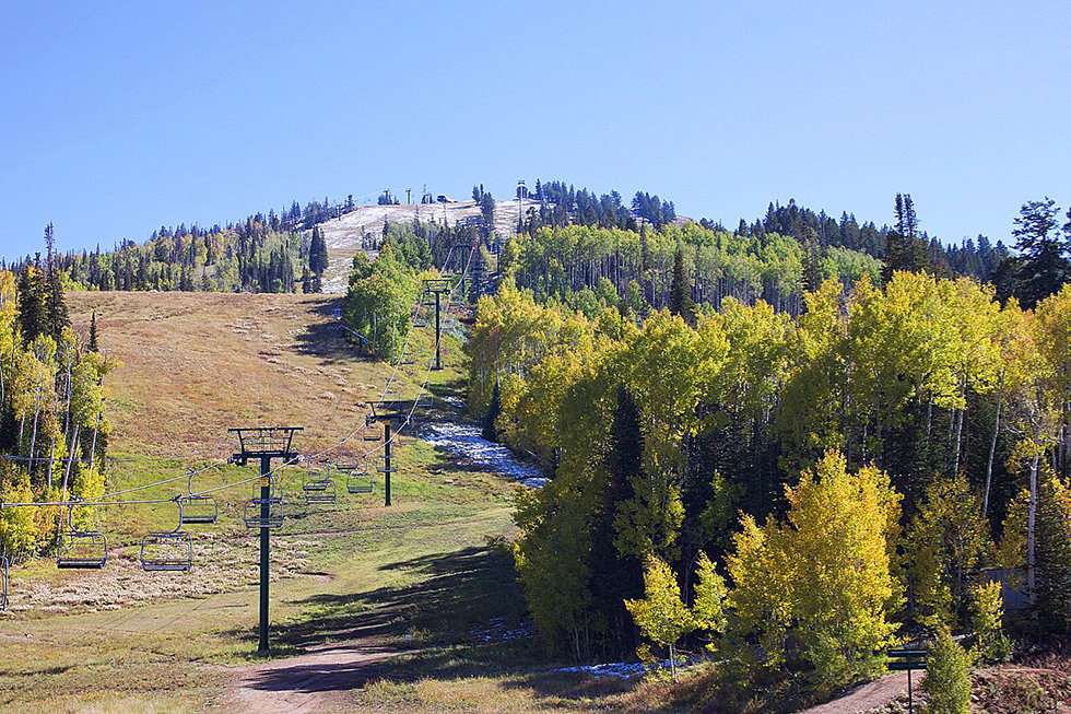 Fall colors on Bald Mountain Deer Valley