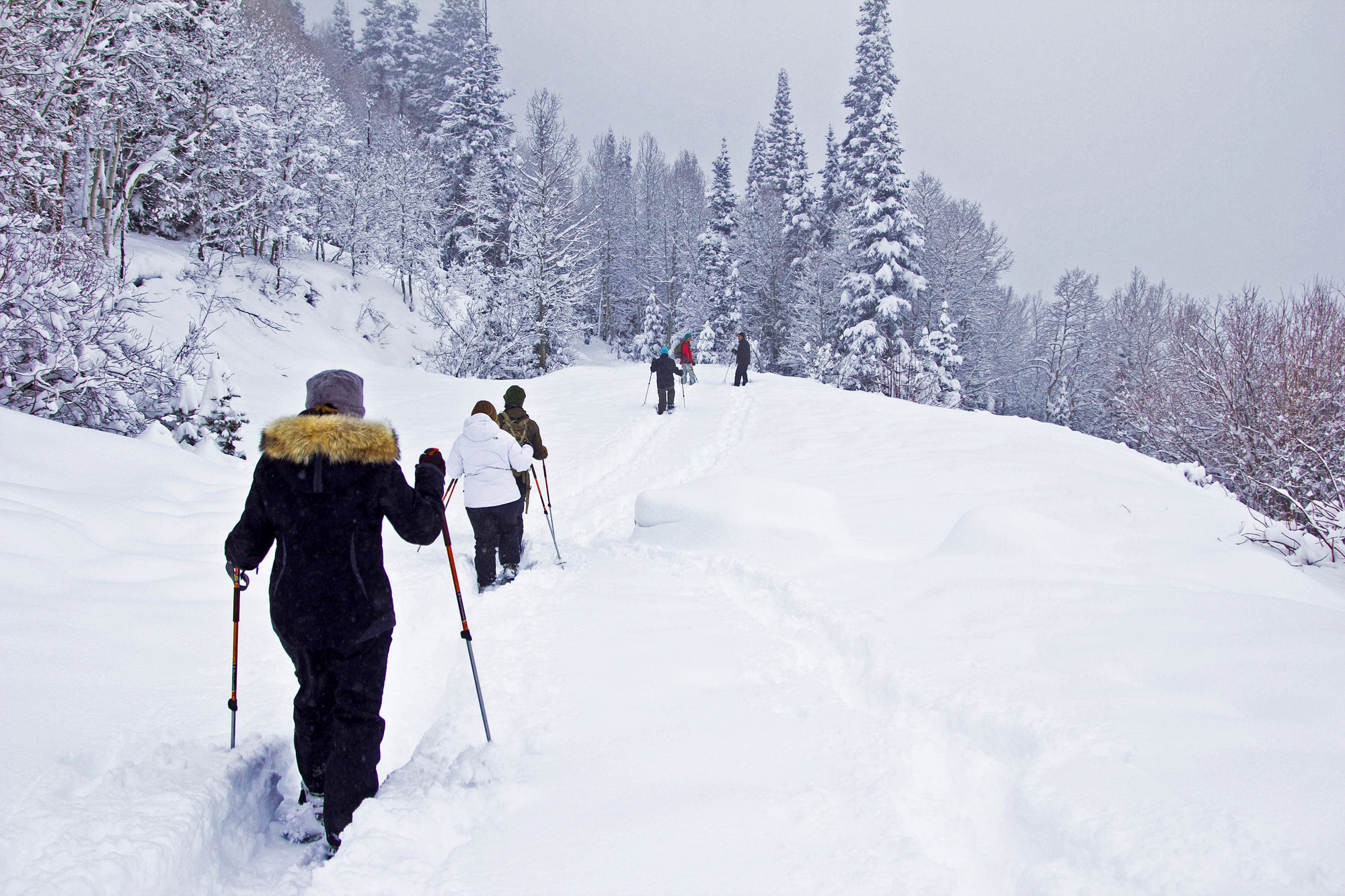 Snowshoeing in the Uintas