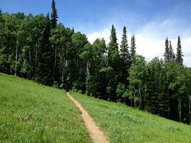 The BEST Mountain Bike Trails in Utah - Singletrackscom
